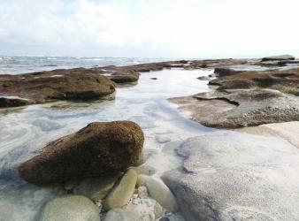 Unique investment, Land on Pantai Kita, 20 minutes from Tambolaka airport