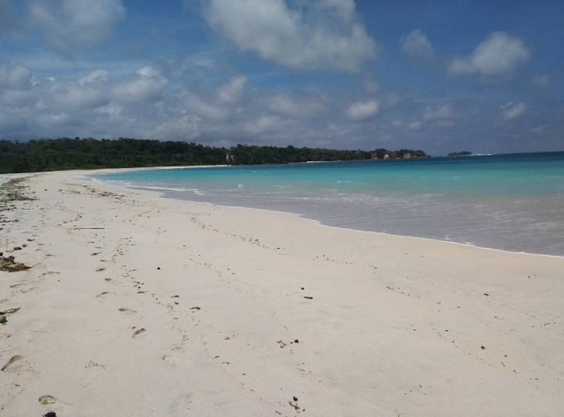 Land for sale, Waingapu, Sumba Island, excellent investment