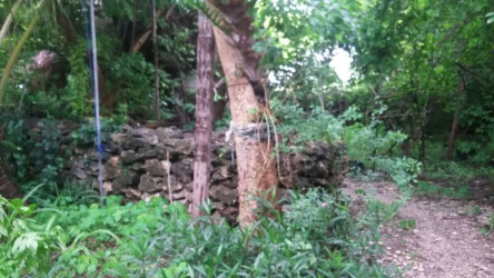 Land of area 3,5 hectares with a villa right on the beach - near Waingapu city, Sumba Island