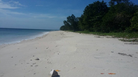 Lands in the north of Sumba Timur, excellent investment