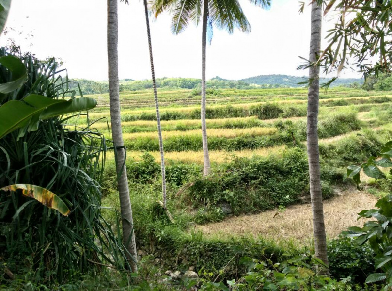 Land on the Nihiwatu beach , excellent investment