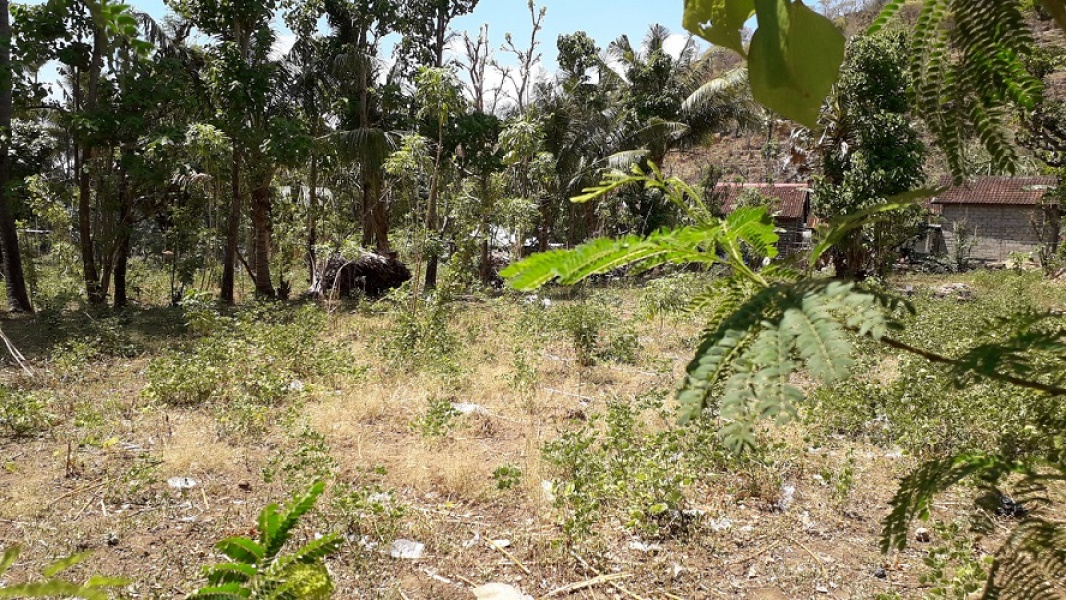Land in Lean - Amed area, Bali, for sale
