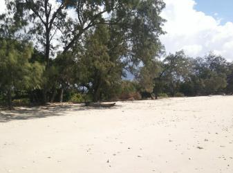 Land for sale  on Lenang Beach, Sumba