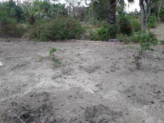 Land in Amed - 250 m2, Pantai Melasti, Bali