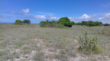 Land for sale on Pantai Maukaraki, Sumba Island