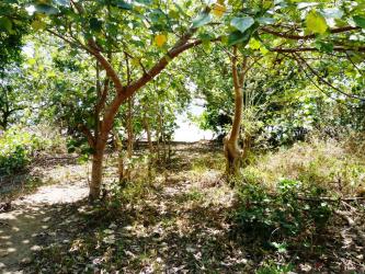 Land for sale on Pantai Maloba, Sumba Island