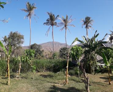 4 Are Land for lease, Jl. Melasti, Amed area, Karangasem, Bali