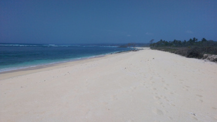 The best surf beach property Pantai Marosi, West Sumba Island