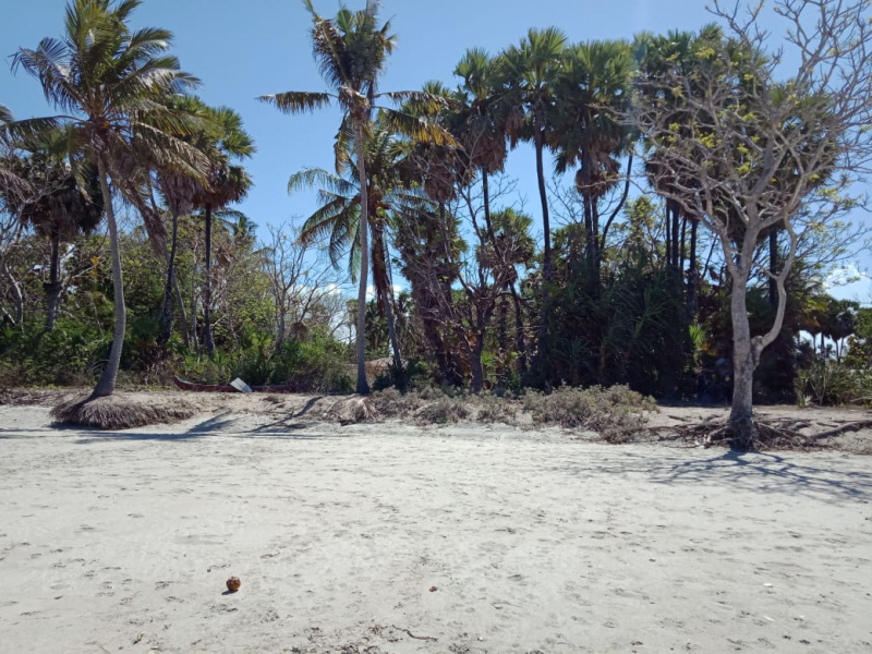 Beautiful beachfront land Pantai Melolo, East Sumba Island
