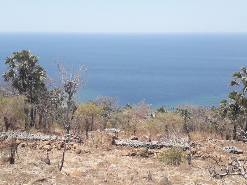 Villas Bukit  Lipah - ocean view