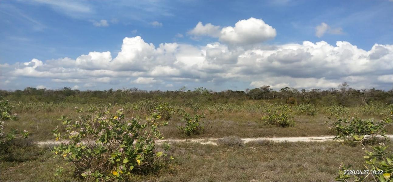 Land for sale on pantai Karuni, West Sumba
