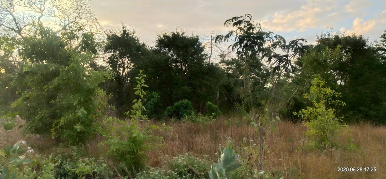 Land for sale on pantai Ramma Dana, West Sumba