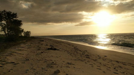 Land for sale on pantai Ramma Dana, West Sumba